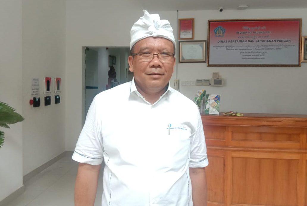 Prof. Damriyasa. Foto: ib alit susanta