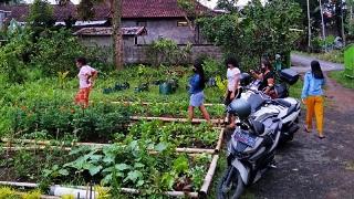 MASYARAKAT tengah mencari bibit sayuran gratis yang dibagikan pengusaha asal Gianyar. Foto: ist