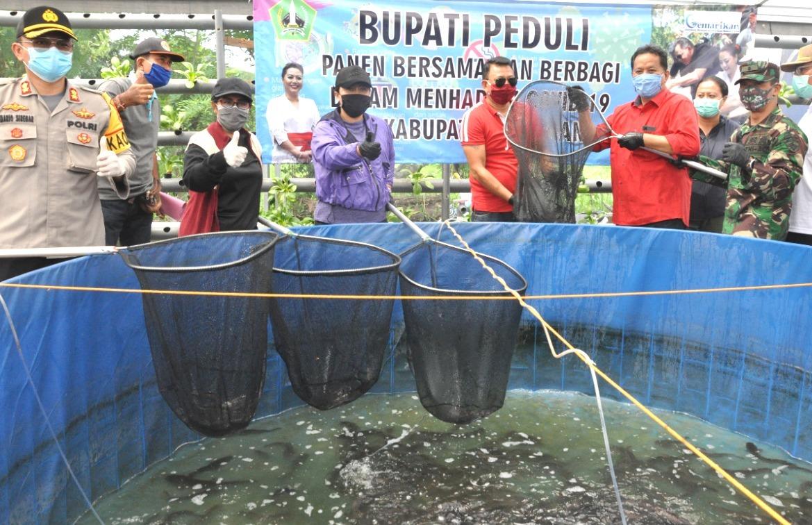 BUPATI Ni Putu Eka Wiryastuti menggulirkan program gotong royong membeli produk hasil perikanan darat para petani ikan, dengan menggandeng 6.700 ASN di lingkungan Pemkab Tabanan. Foto: gagah