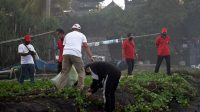 DISPARBUD Jembrana bersama PHRI menggelar even Jembrana Clean Up Day (JCD), berupa aksi sosial bersih-bersih pantai di Desa Candikusuma, Kecamatan Melaya, Kabupaten Jembrana, Jumat (3/7). Foto: ist