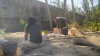 SEJUMLAH warga pada Minggu (20/9) masih menggali lubang di areal tanah pribadi dekat sebelah barat Depo Pertamina untuk mencari minyak. Foto: nad