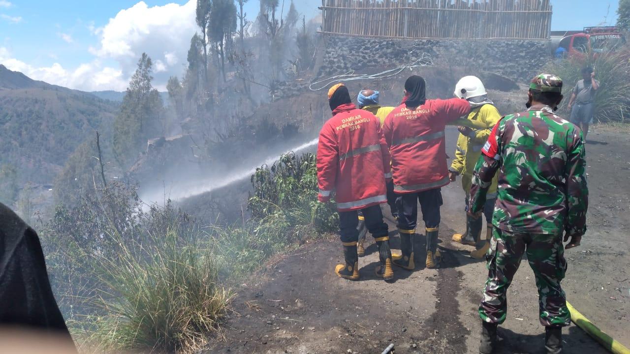Foto: HUTAN TERBAKAR PETUGAS berusaha memadamkan api yang menghanguskan sekitar lima hektar hutan lindung di Desa Pinggan, Rabu (14/10/2020). Foto: gia