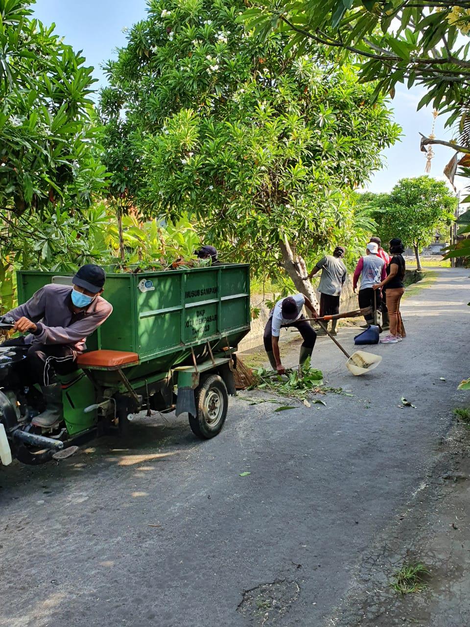 PEROMPESAN pohon perindang pada Sabtu (3/10/2020) di kawasan Jalan Tukad Bilok, gang Saridaging, Kelurahan Renon. Foto: ist