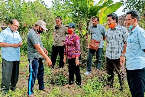 KADIS Pertanian dan Ketahananan Pangan Provinsi Bali, Ida Bagus Wisnuardhana (pakai masker orange), saat meninjau petani di Desa Taro, Tegallalang, Gianyar, Kamis (12/11/2020). Foto: ist