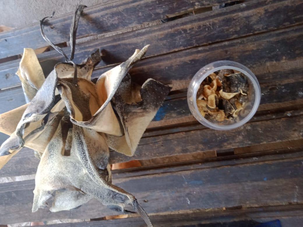 TOPLES yang berisi kerupuk kulit ikan buntak yang dikonsumsi kedua korban hingga mengalami keracunan. Foto: rik