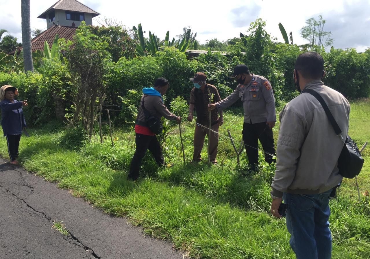 POLISI sempat melakukan olah TKP atas laporan warga yang kehilangan seekor induk sapi di Banjar Dinas Kutuh, Desa Lalanglinggah, Selemadeg Barat, namun kemudian sudah ditemukan kembali, Selasa (17/11/2020). Foto: ist