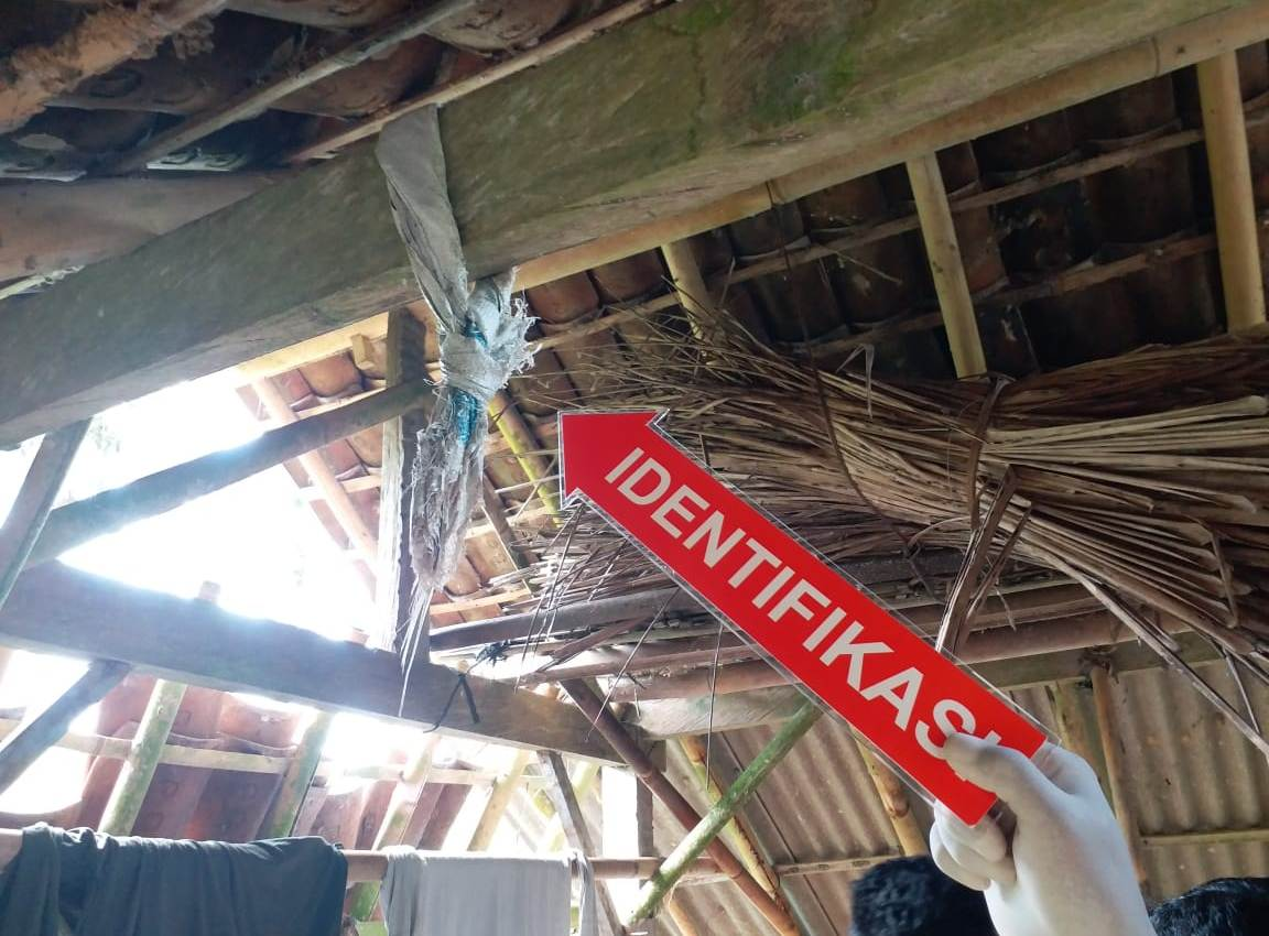 KANDANG sapi lokasi TKP seorang satpam bank di Tabanan mengakhiri hidupnya dengan cara gantung diri. Foto: ist
