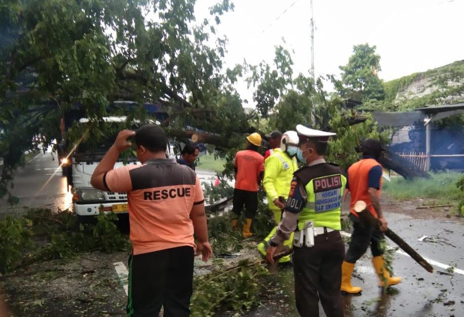 PETUGAS mengevakuasi pohon tumbang yang menimpa sebuah truk. Foto: adi