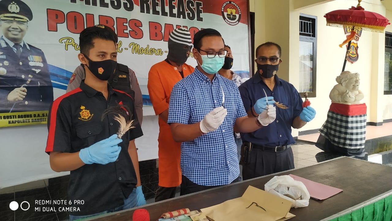POLISI memperlihatkan tersangka I Ketut Soto (60) dan barang bukti sabung ayam di Mapolres Bangli, Selasa (12/1/2021). Foto: ist