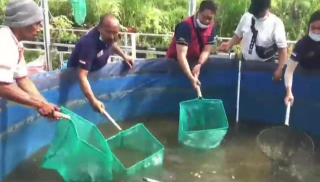 DINAS Pertanian, Ketahanan Pangan dan Perikanan Bangli melakukan panen perdana demplot budidaya ikan lele dengan sistem bioflok. Foto: gia