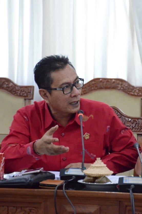 ANGGOTA Komisi II dari Fraksi Gerindra DPRD Bali, I Kade Darma Susila. Foto: hen