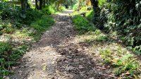 JALAN menuju Pura Dalem penghubung Banjar Sekaan dengan Banjar Undisan Kaja, Desa Undisan, Kecamatan Tembuku mengalami kerusakan cukup parah. Foto: gia