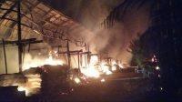 SATU kandang beserta puluhan ribu bibit ayam boiler yang baru berumur beberapa hari milik warga Desa Rendang, Karangasem hangus terbakar pada Kamis (6/5/2021) pagi. Foto: ist