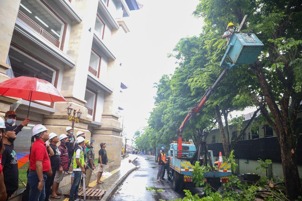 BUPATI Gianyar, Made Mahayastra, memantau pemangkasan pohon perindang di seputaran Pasar Gianyar. Foto: ist