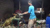 PEMBUATAN gula sorgum di Desa Bukti, Buleleng